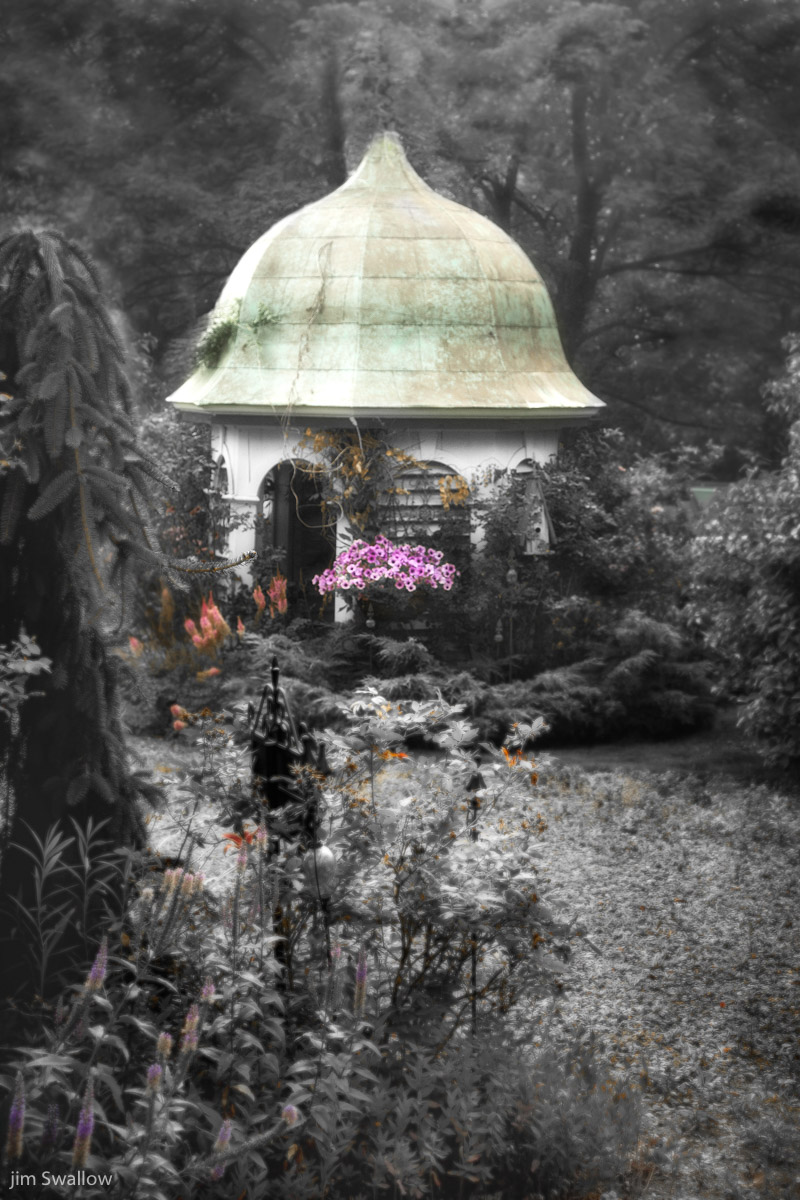 Selective Color Collection Photographic Art By Jim Swallow